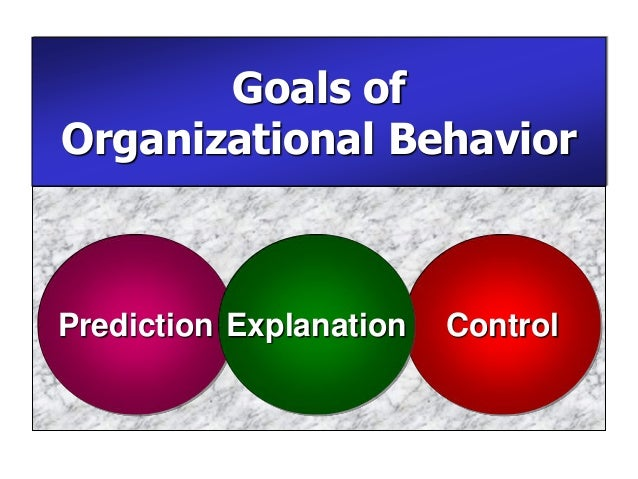 an introduction to the analysis of organizational behavior Organizational behavior: an analysis of helm fire and rescue company introduction organizational behavior is referred to as the study of individuals and their relative behavior subject to the existing organizational environment the concept applies in a diverse workplace setting in different ways and had diverse impacts to the organization.