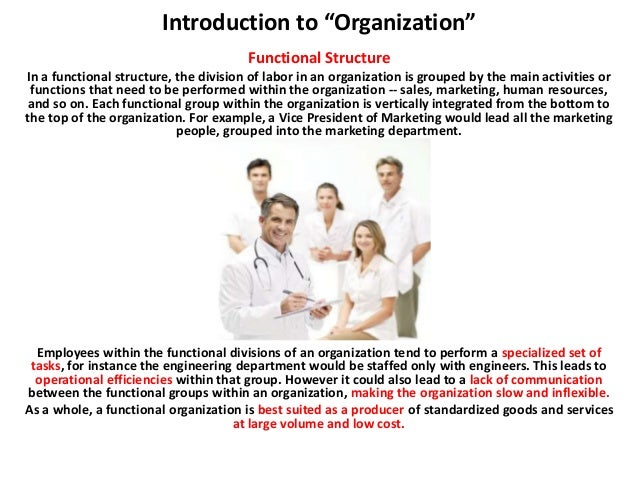 introduction to organization structure Under functional organizational structure, employees are grouped based on their roles and functions, resulting in functional units such as marketing, hr.
