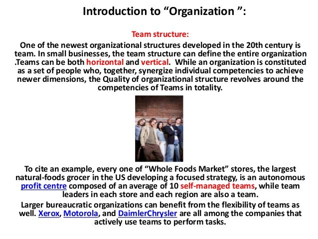 introduction to organization fundamentals ppt presentation eas…, Powerpoint templates