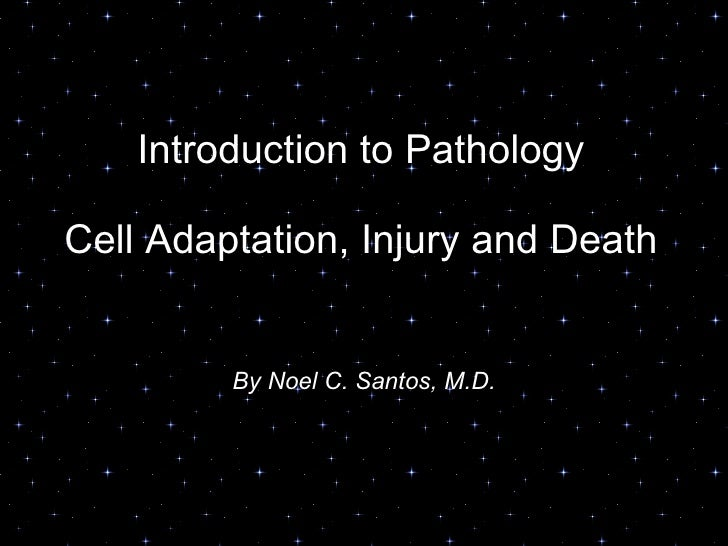 Introduction to Pathology Cell Adaptation, Injury and Death By Noel C. Santos, M.D.