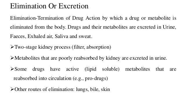 Pharmacokinetics and Pharmacodynamics (PK/PD Studies)