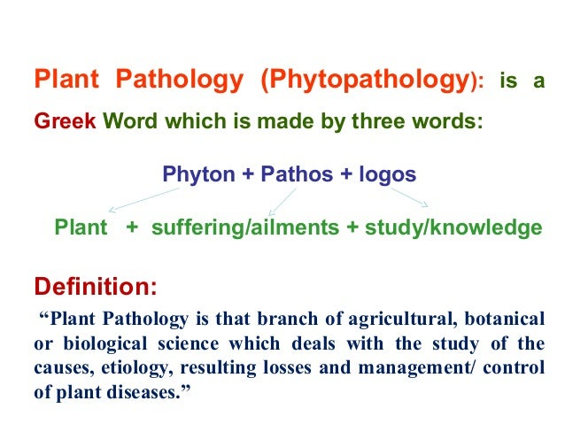 role of plant pathology in agriculture