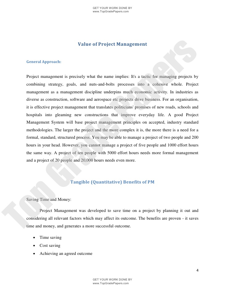 essays on management project management essay