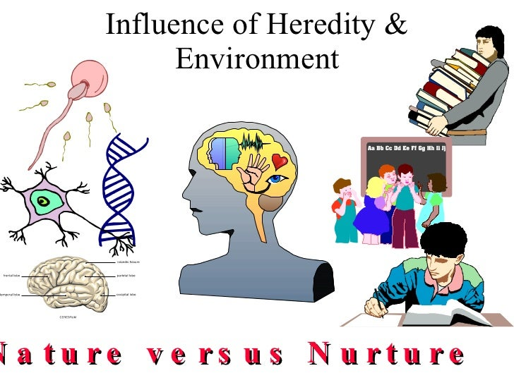 nurture influence of personal experiences Neuroscientists are summoned to demonstrate the palpable impact of severe  deprivation in the first years of life -- recall the horrific accounts of.