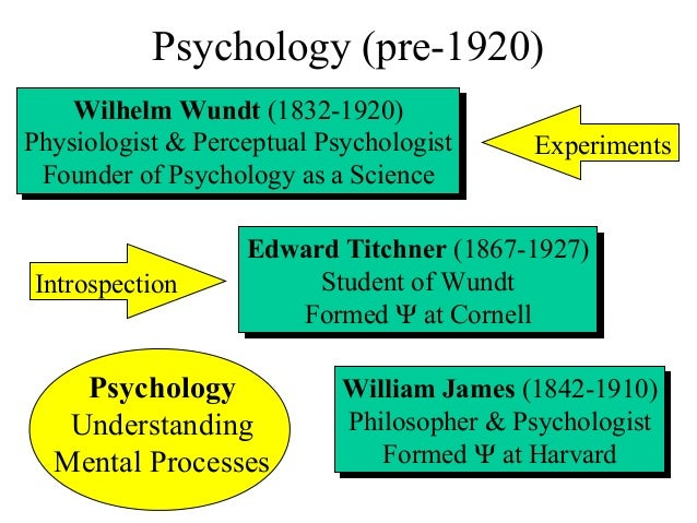 an overview of psychology Have a look at the programme outline and courses for the bachelor's programme in psychology at radboud university.