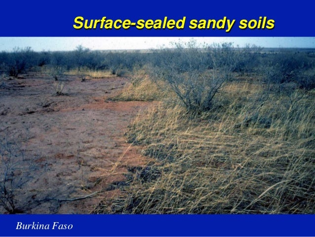 an overview of the soil and land management Executive summary soil fertility degradation has been described as the single most important constraint to food land and soil degradation have serious consequences for technological innovations for improving soil fertility and management.