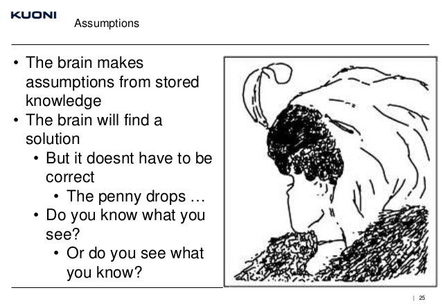 Assumptions  • The brain makes assumptions from stored knowledge • The brain will find a solution • But it doesnt have to ...