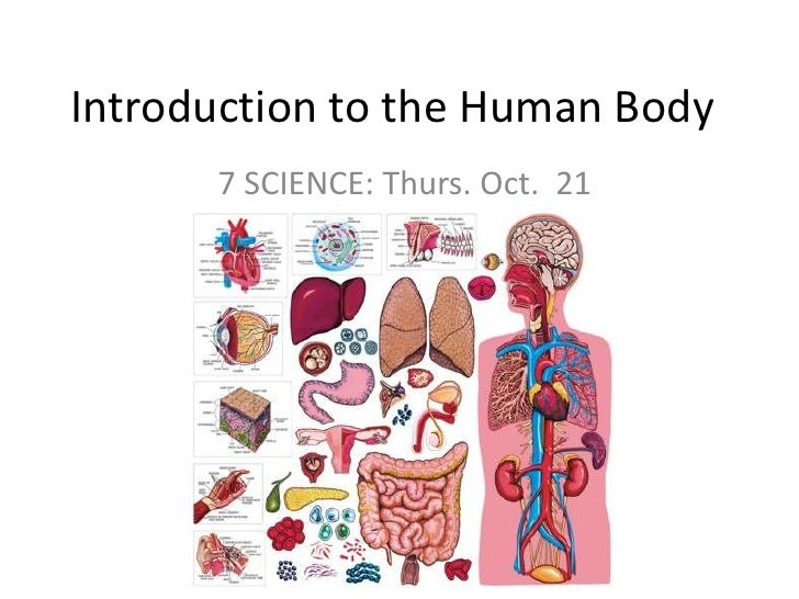 Introduction to the Human Body<br />7 SCIENCE: Thurs. Oct.  21<br />