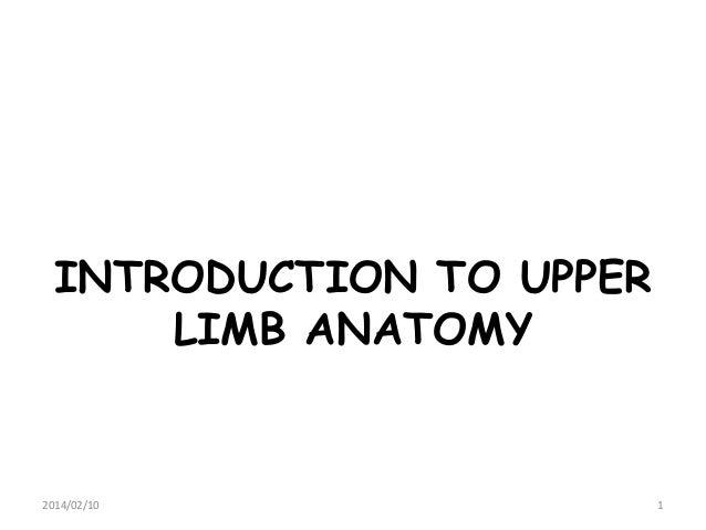 INTRODUCTION TO UPPER LIMB ANATOMY  2014/02/10  1