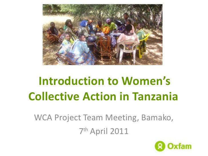 Introduction to Women's Collective Action in Tanzania  WCA Project Team Meeting, Bamako,  7 th  April 2011