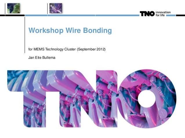 Workshop Wire Bonding for MEMS Technology Cluster (September 2012) Jan Eite Bullema
