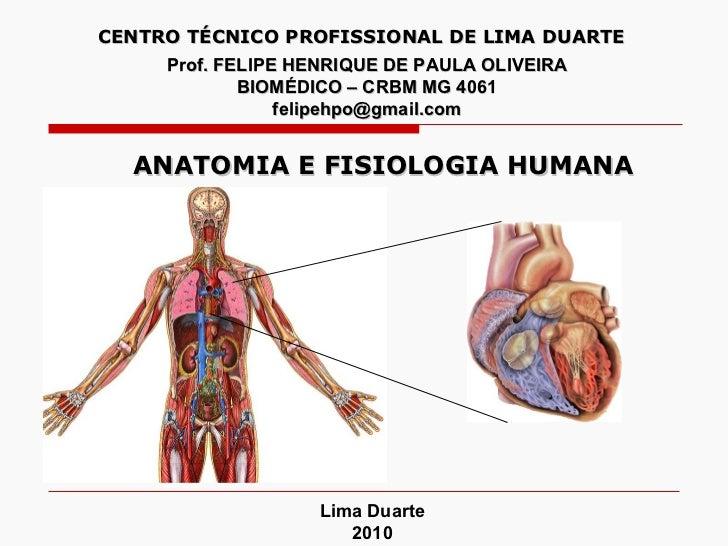 Prof. FELIPE HENRIQUE DE PAULA OLIVEIRA BIOMÉDICO – CRBM MG 4061 [email_address] Lima Duarte 2010 CENTRO TÉCNICO PROFISSIO...