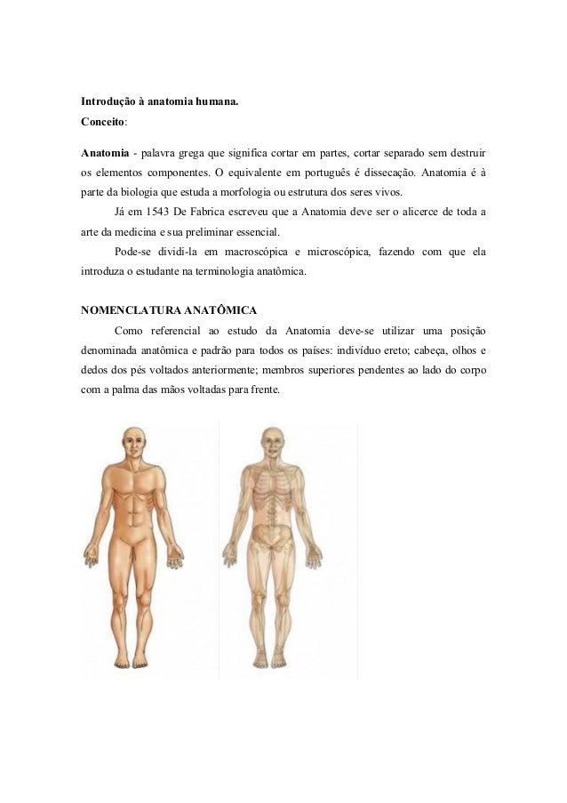Introdução à anatomia humana. Conceito: Anatomia - palavra grega que significa cortar em partes, cortar separado sem destr...