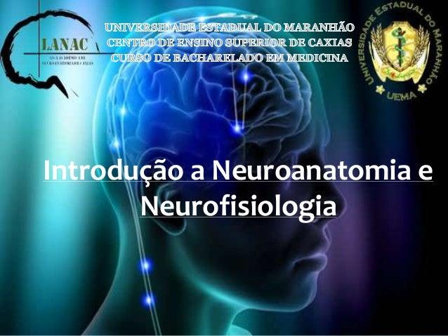 Introdução a Neuroanatomia e  Neurofisiologia