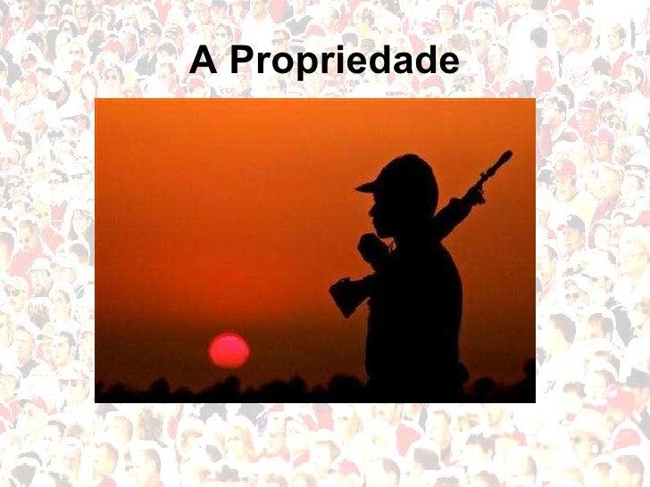 A Propriedade