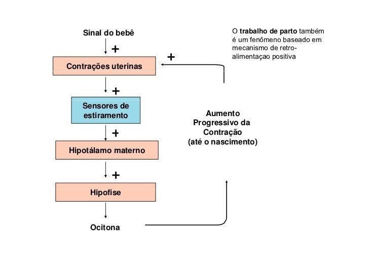 Introdução à Fisiologia - Fisiologia