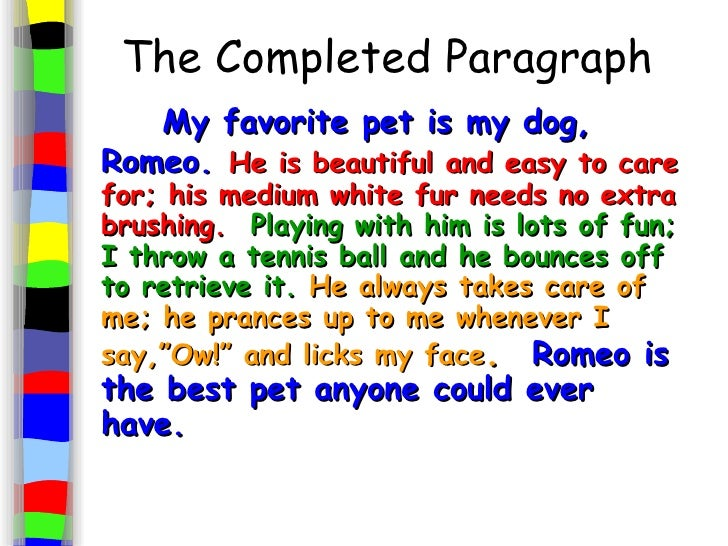 Essay of pet animals