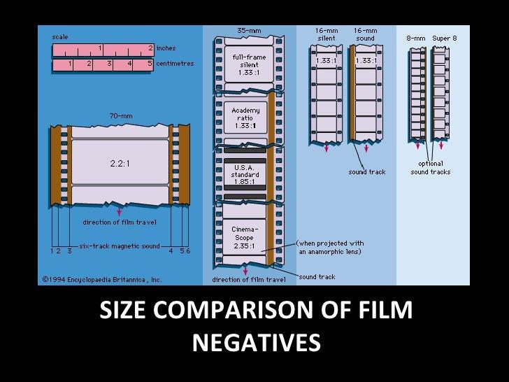 SIZE COMPARISON OF FILM NEGATIVES