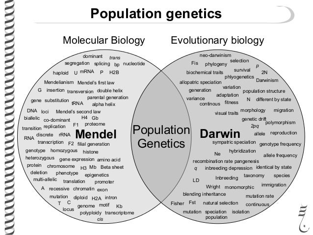 an introduction to dna and its role in population evolution Introduction: human evolution  humans are really just a peculiar african ape - we share about 98% of our dna with  fewer than 50 people could have given rise to the entire population of.