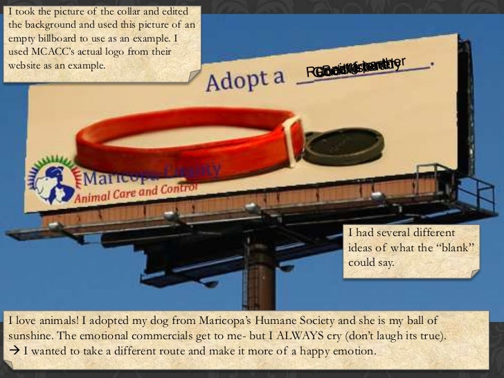 I took the picture of the collar and edited the background and used this picture of an empty billboard to use as an exampl...