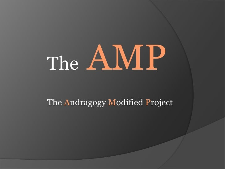 TheAMP<br />The Andragogy Modified Project<br />