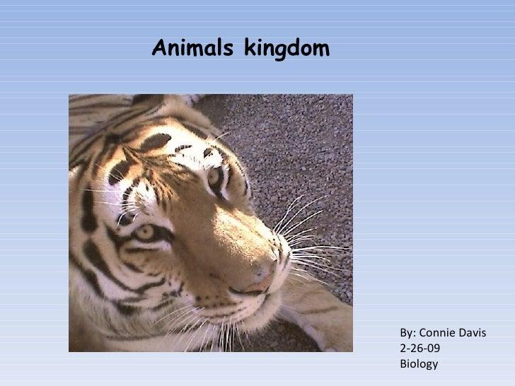 By: Connie Davis 2-26-09 Biology Animals kingdom