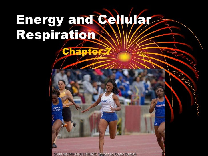 Energy and Cellular Respiration<br />Chapter 7<br />