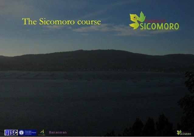 @anxosan The Sicomoro course