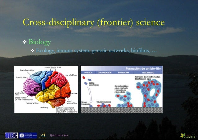 @anxosan ❖ Biology ❖ Ecology, inmune system, genetic networks, biofilms, … Cross-disciplinary (frontier) science