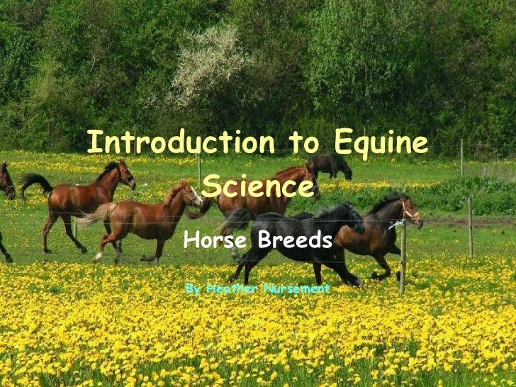 Introduction to Equine Science Horse Breeds By Heather Nursement