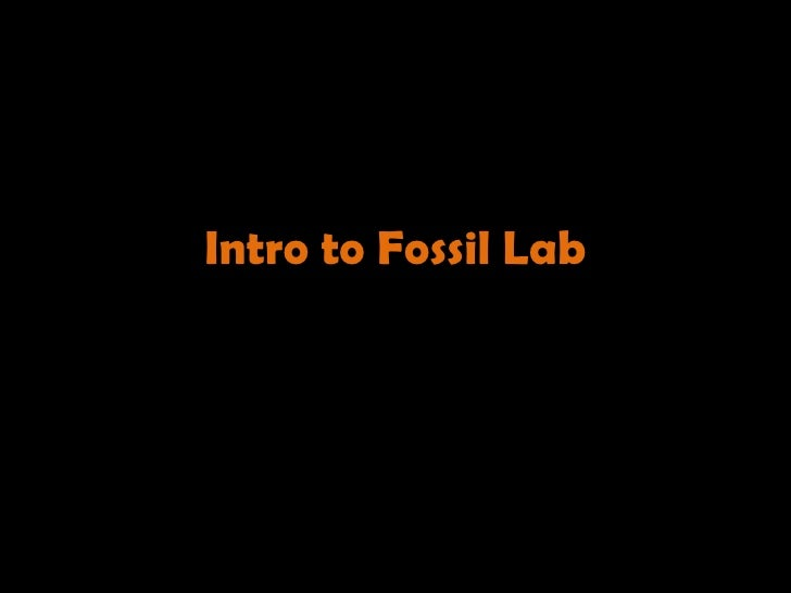 Intro to Fossil Lab