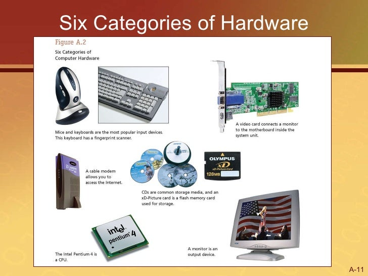 Application Software Manages The Computers Hardware Devices