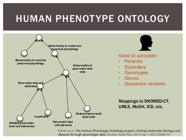 The Application of the Human Phenotype Ontology