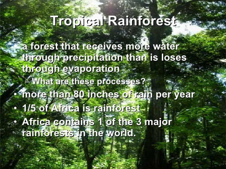 a short description of the amazon tropical rain forest Full lesson plan for independent writing describing a rainforest setting includes interactive wb slides, picture to describe, marking ladder, planning and writing sheets as well as lesson.