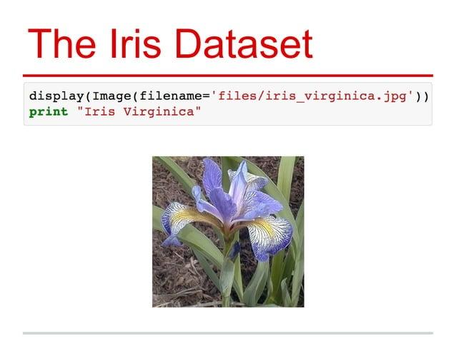 The Iris Dataset