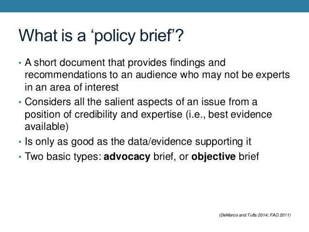 2 What Is A Policy Brief