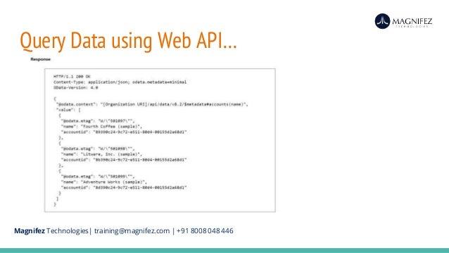 Xrm Page Web Api