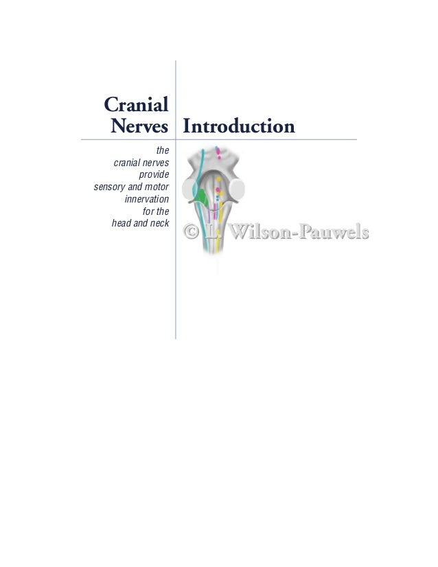 Cranial  Nerves Introduction                the    cranial nerves           providesensory and motor       innervation    ...