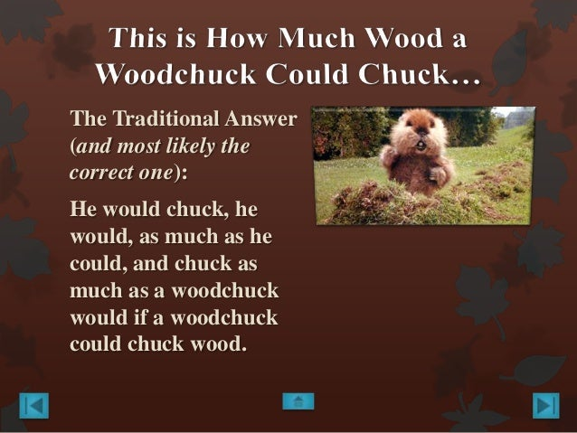 How Much Wood Can A Woodchuck Chuck & Other Questions ...
