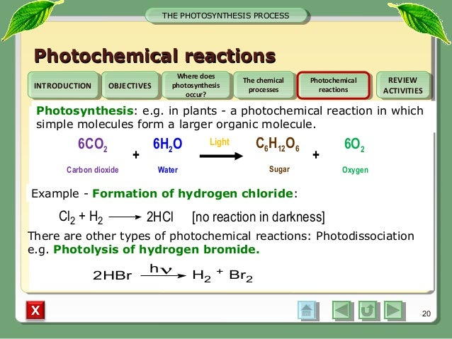 Photosynthesis converts solar energy into