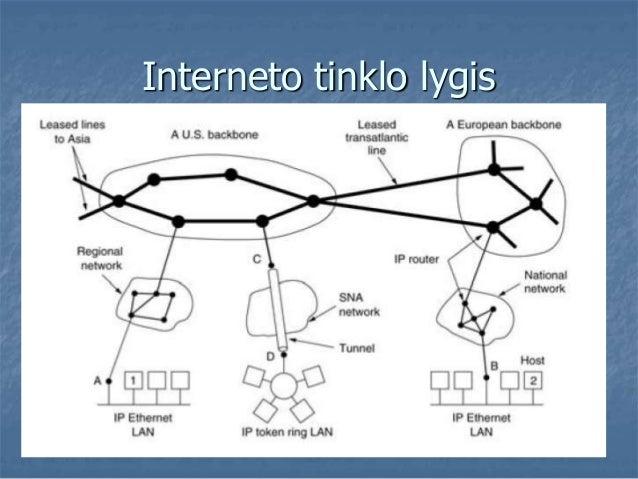 Interneto tinklo lygis