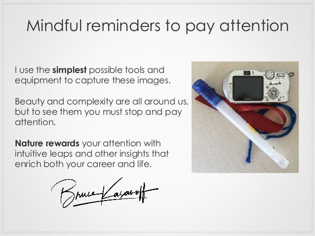 Mindful reminders to pay attention I use the simplest possible tools and equipment to capture these images. Beauty and com...