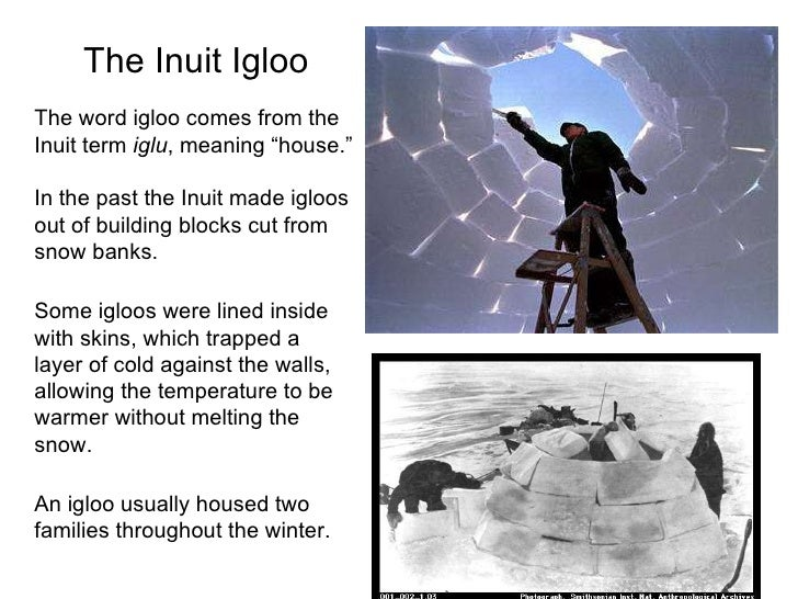 "essay on inuit culture In this essay, ""wear qisi, become the inuktitut language and inuit culture as well as of the topic of identity and visions of the future in the statements of."