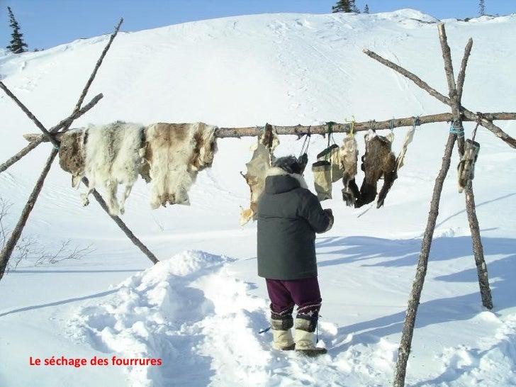 Le séchage des fourrures