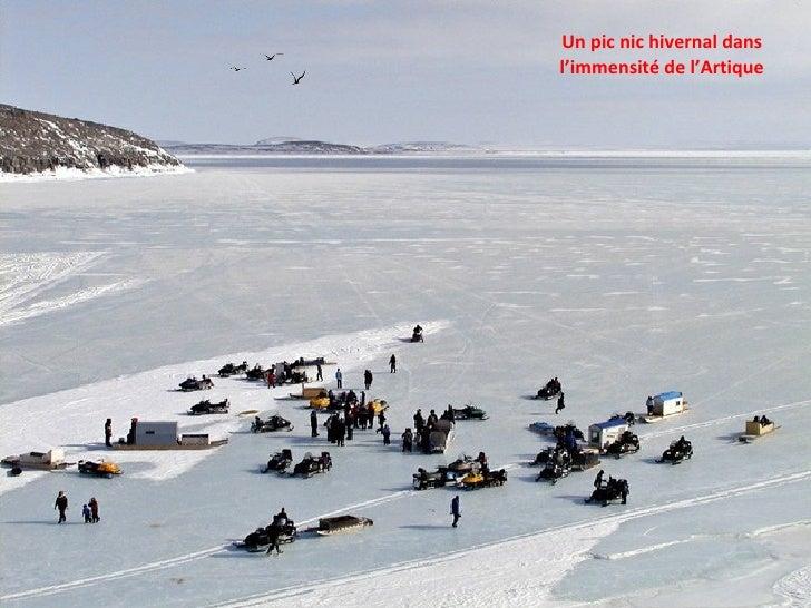 Un pic nic hivernal dans l'immensité de l'Artique