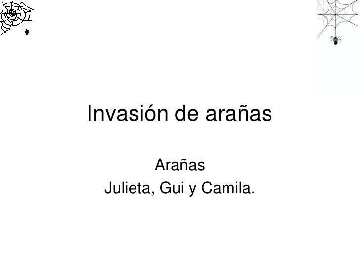 Invasión de arañas         Arañas Julieta, Gui y Camila.