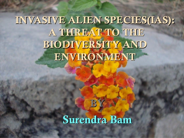 INVASIVE ALIEN SPECIES(IAS):     A THREAT TO THE    BIODIVERSITY AND      ENVIRONMENT             BY        Surendra Bam