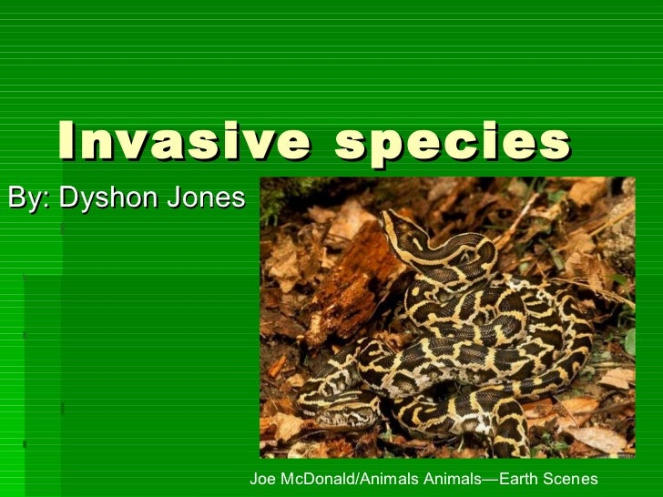 Invasive species By: Dyshon Jones Joe McDonald/Animals Animals—Earth Scenes