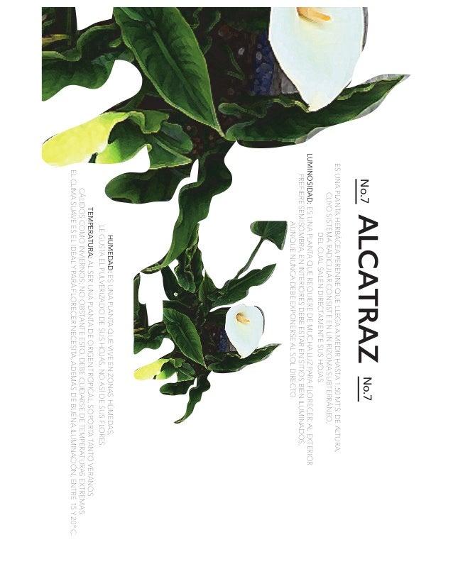 ALCATRAZNo.7No.7 HUMEDAD: TEMPERATURA: LUMINOSIDAD: