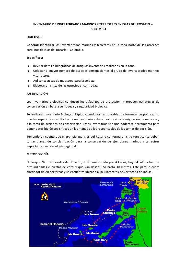 INVENTARIO DE INVERTEBRADOS MARINOS Y TERRESTRES EN ISLAS DEL ROSARIO – COLOMBIA<br />OBJETIVOS<br />General: Identificar ...